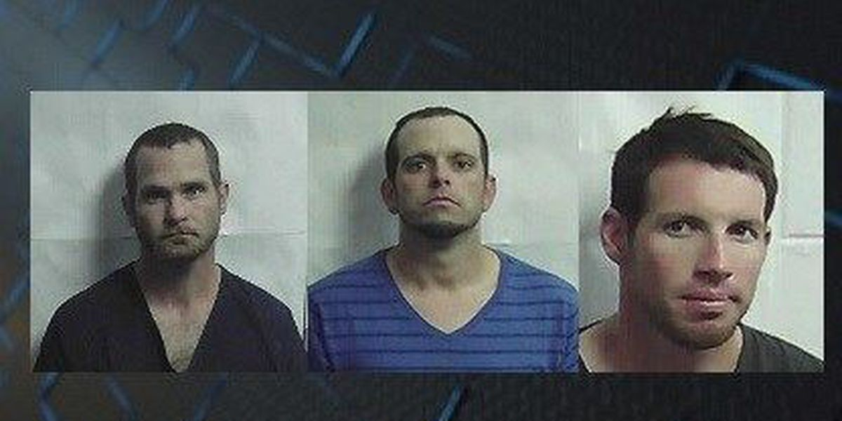 Jeff Davis Co  Sheriff's Office makes slew of arrests in