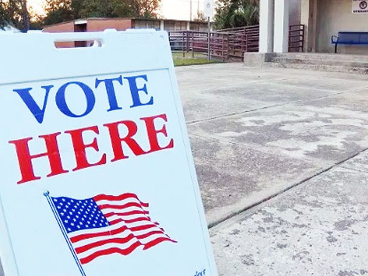 Chatham County Board of Elections member proposing creation of voter education advisory council