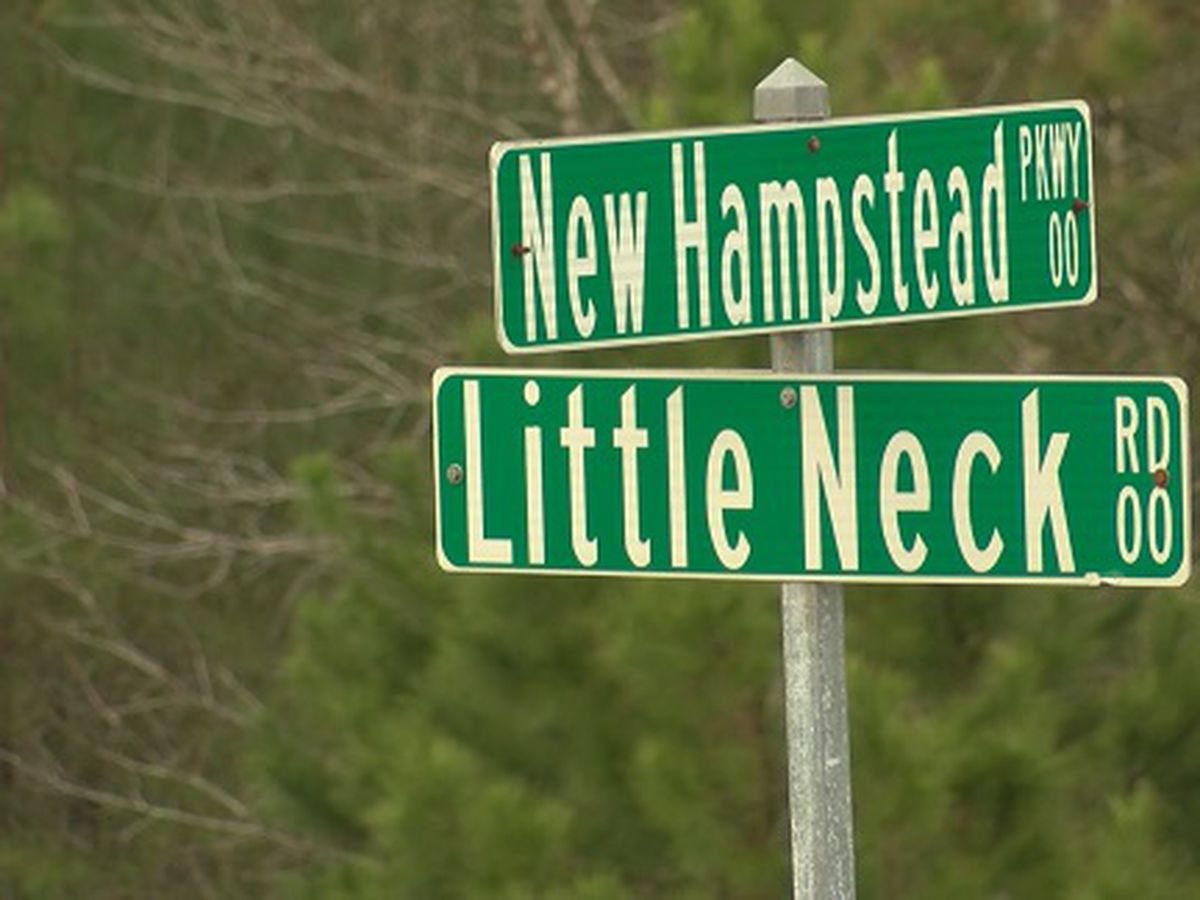 Savannah city leaders discussing whether to accept New Hampstead Development property