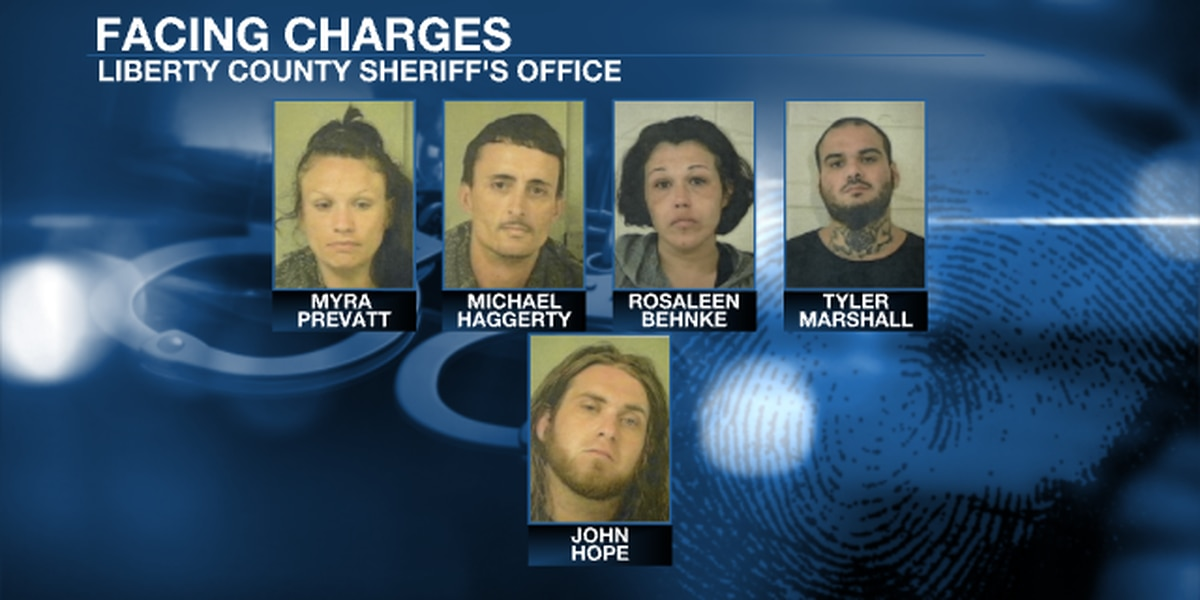 Suspects arrested for selling drugs, firearms in Southeast Ga.