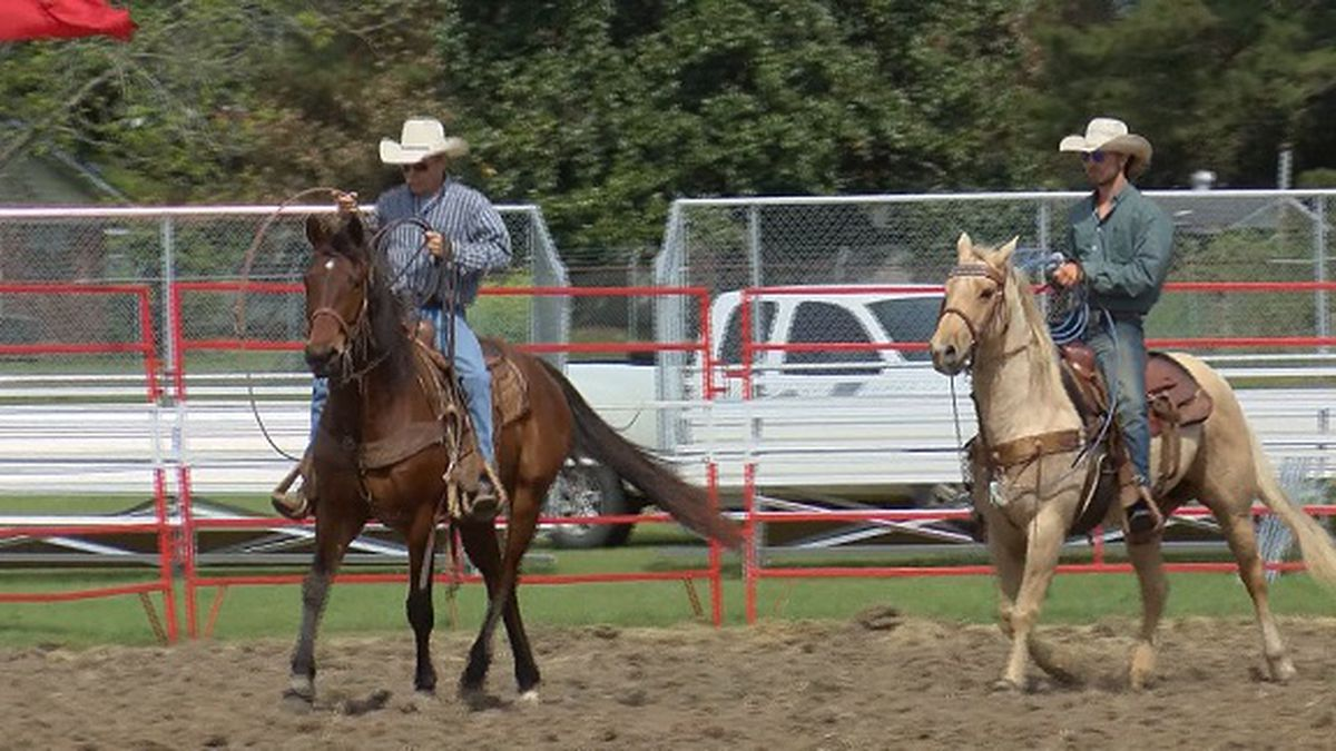 Annual Kiwanis Rodeo Happening This Weekend In Statesboro