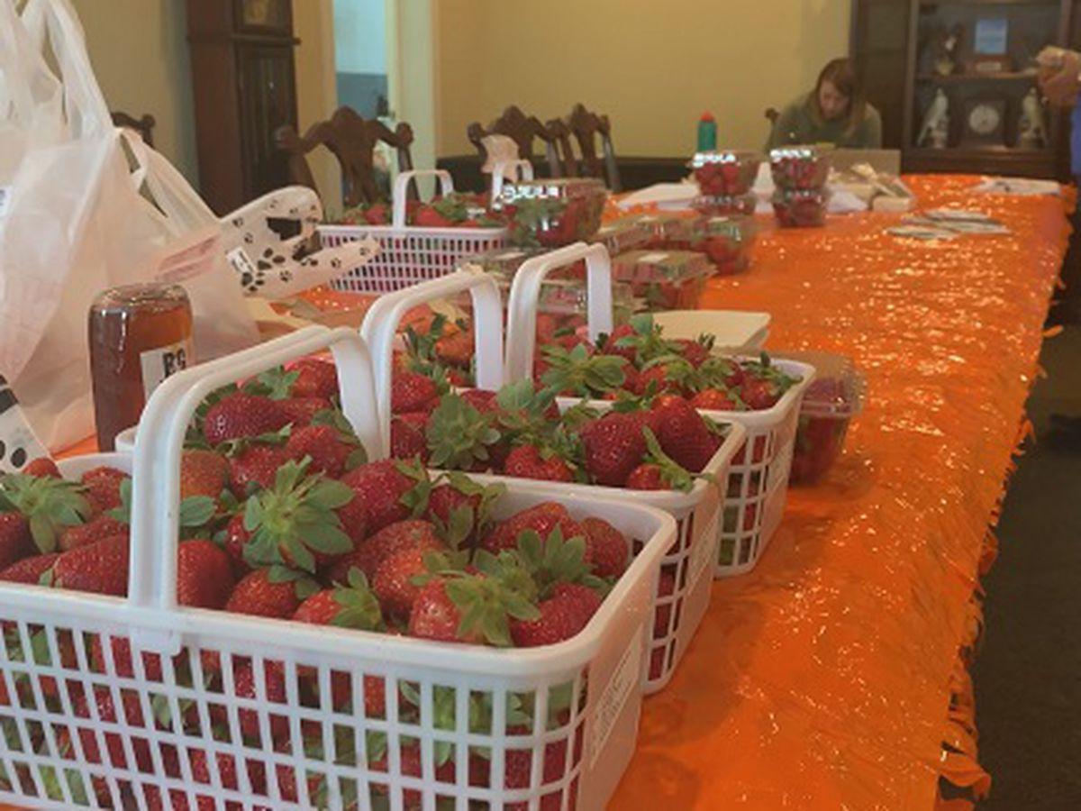 Proud to be a GA Farmer: Statesboro Farmers Market goes online