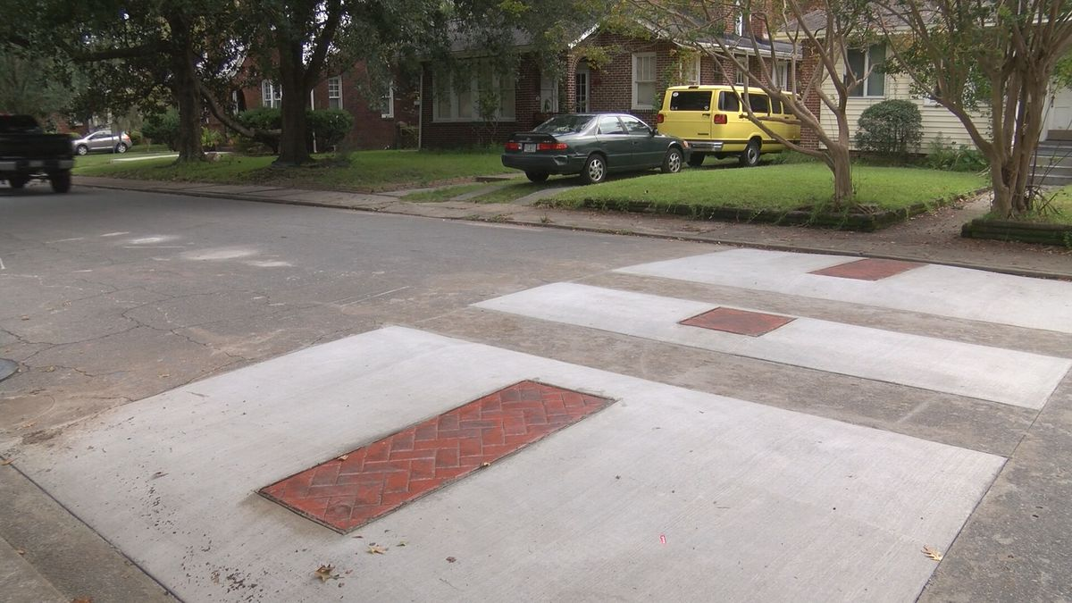 Traffic calming device in Savannah neighborhood does little to deter speeding