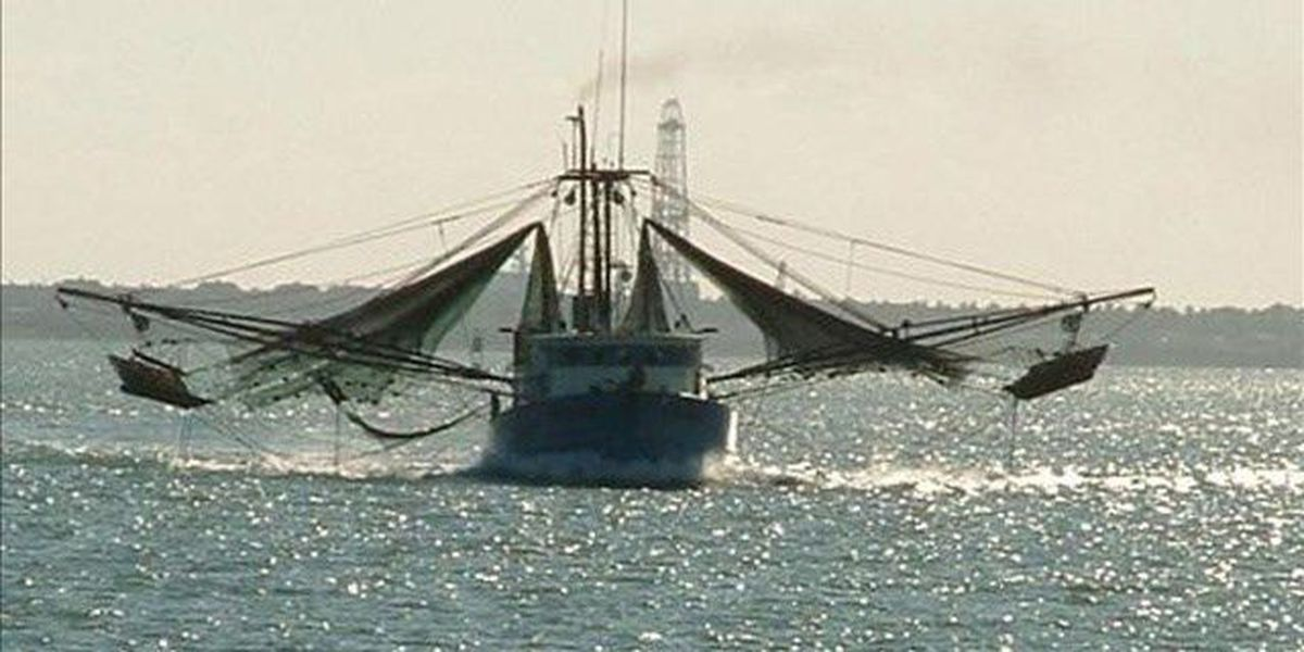 Local lawmakers urging fishery disaster declaration for Georgia's coast