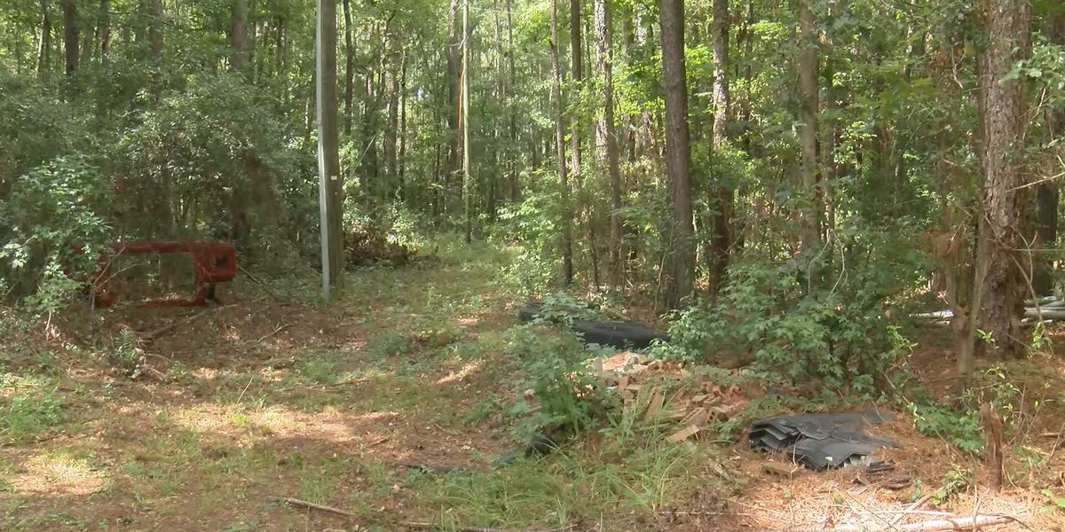 Bryan County NAACP discovers another historic Black cemetery in Richmond Hill