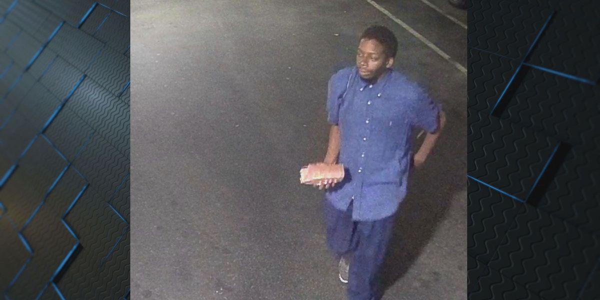 Savannah Police arrest suspect in multiple property damage cases