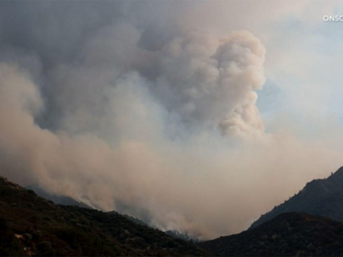 Firefighter dies battling wildfire sparked by gender reveal