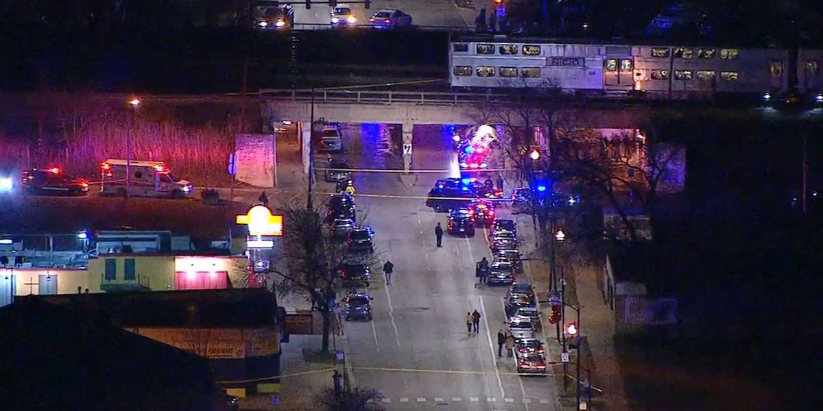 2 Chicago police officers struck and killed by train
