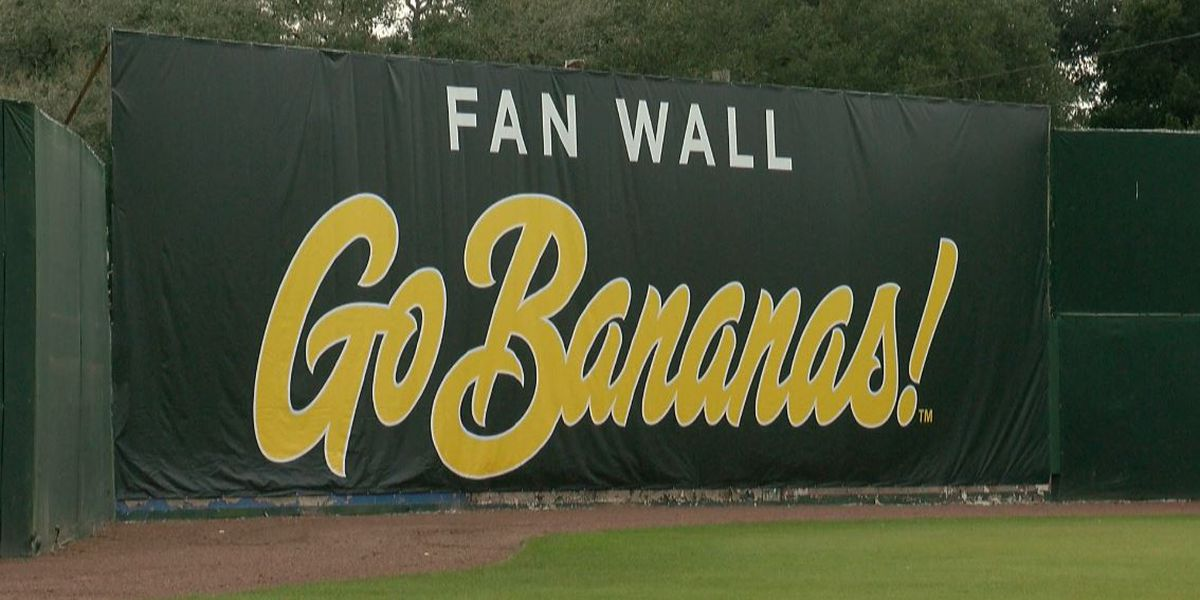 Savannah Bananas launch streaming service