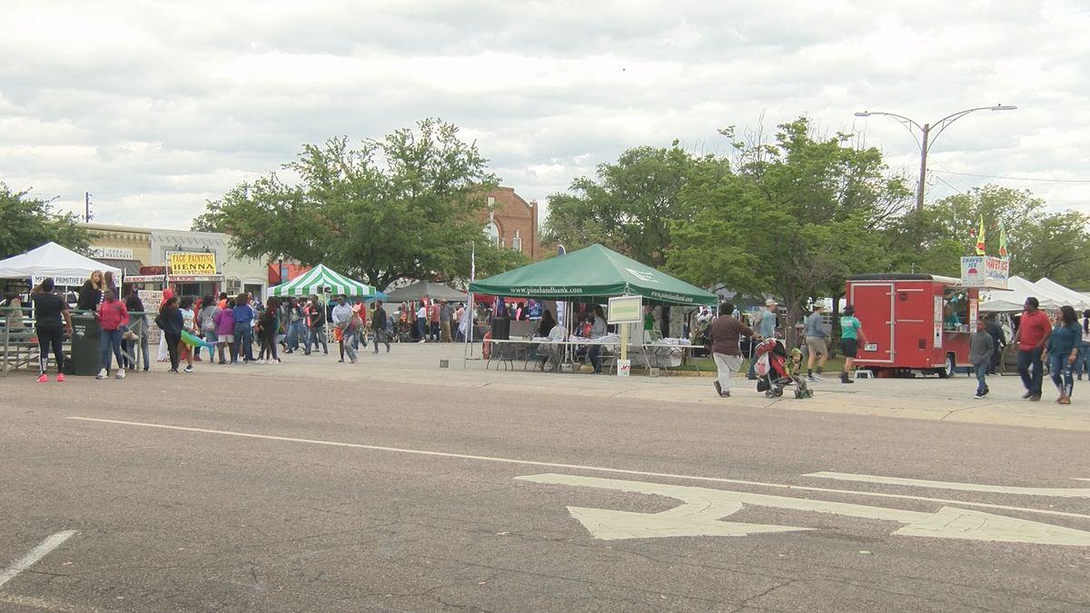 Downtown Metter packed for Another Bloomin' Festival