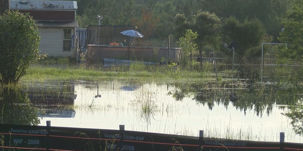 Severe rain forces Bloomingdale residents out of mobile home park