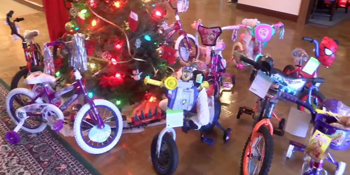 Bulloch Co. employees donate toys for those in need