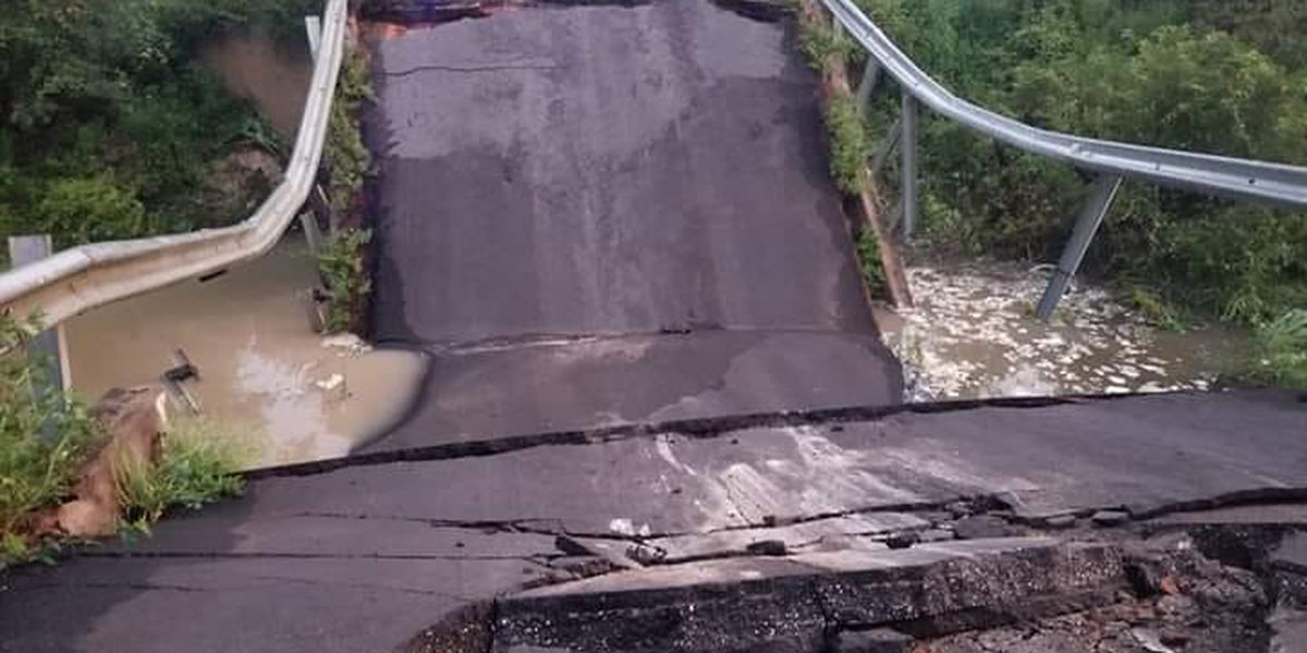 Bridge collapses near Ga., Fla. line