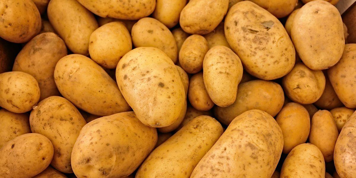 WTOC Cookbook: Bari Soash's Cheesy Mashed Potatoes