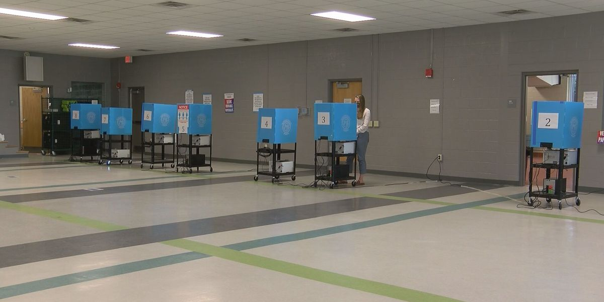 Liberty Co. saw shorter lines on Election Day thanks to absentee voting