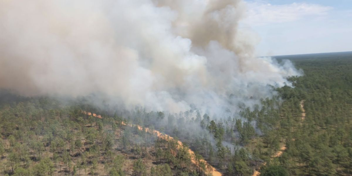 Process behind conducting a large-scale controlled burn