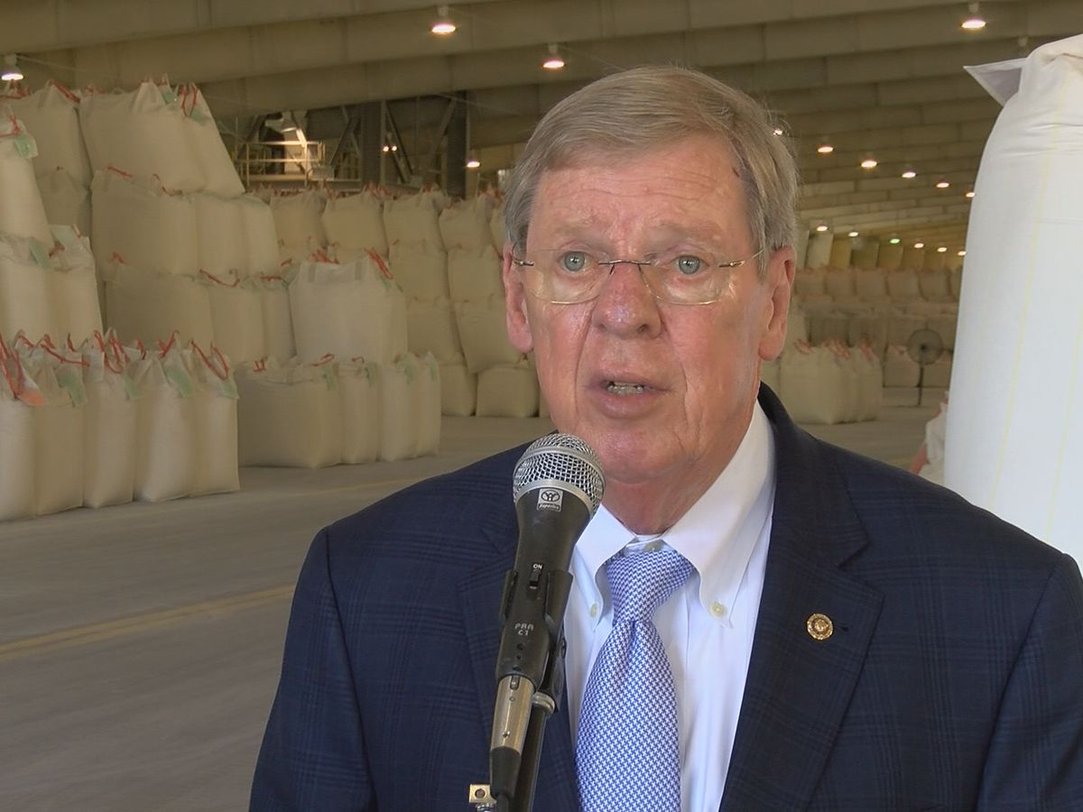 Georgia senator hospitalized after fall