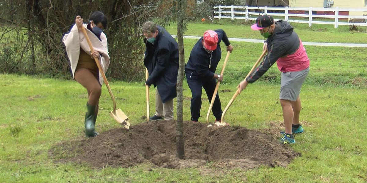 Savannah celebrates Ga. Arbor Day