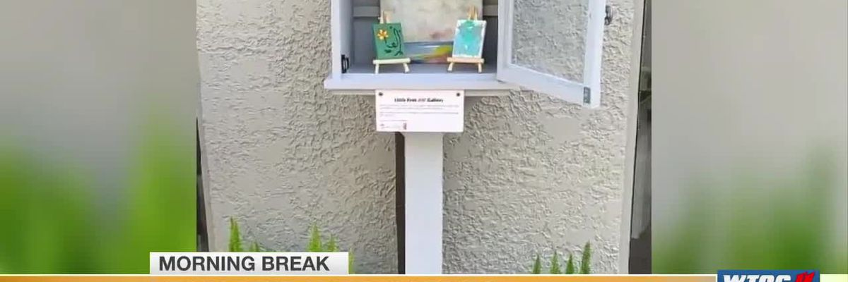 Tiny Free Art Galleries pop up around Hilton Head Island