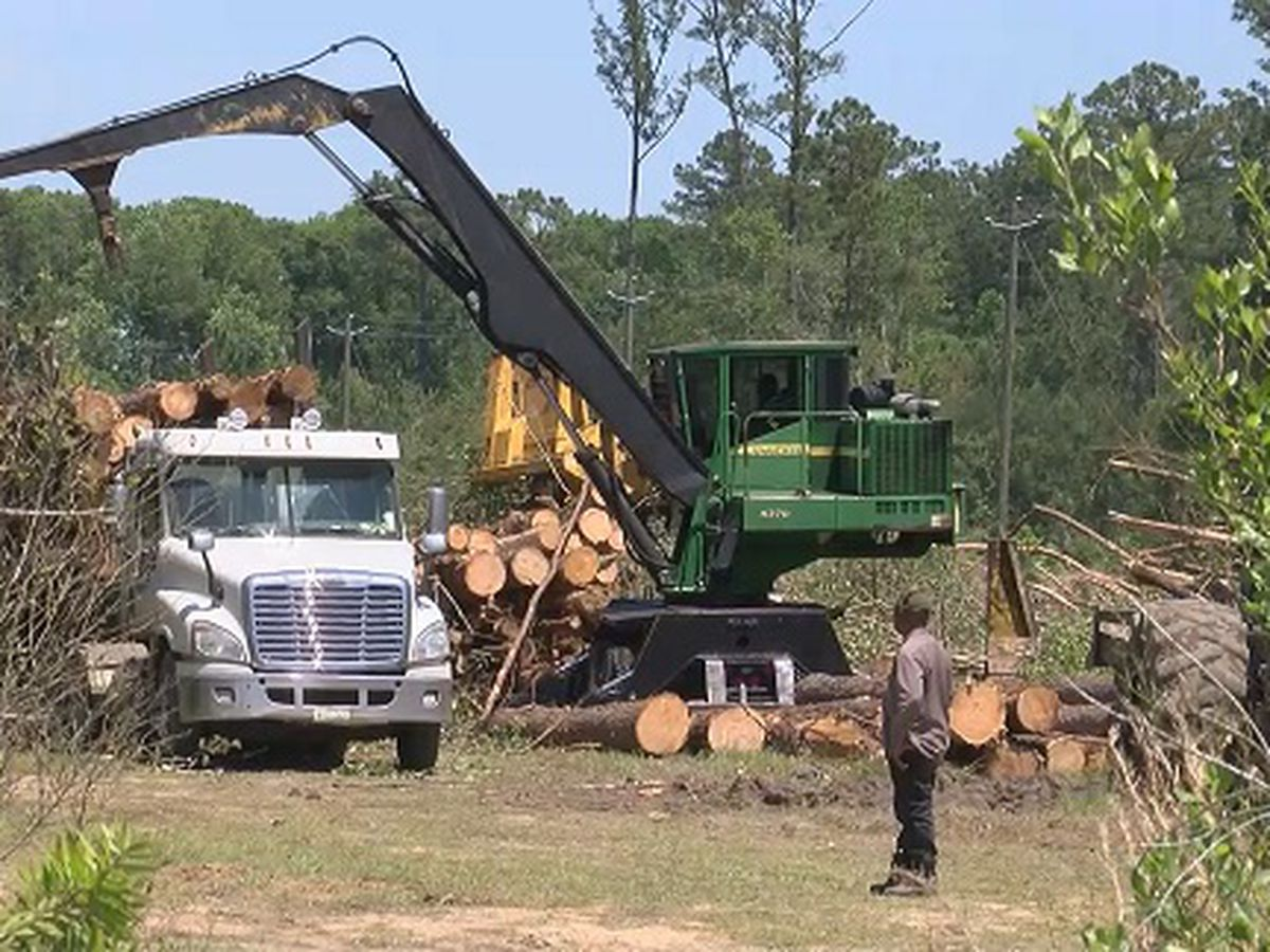 Construction begins on Benton Boulevard extension project in Chatham County