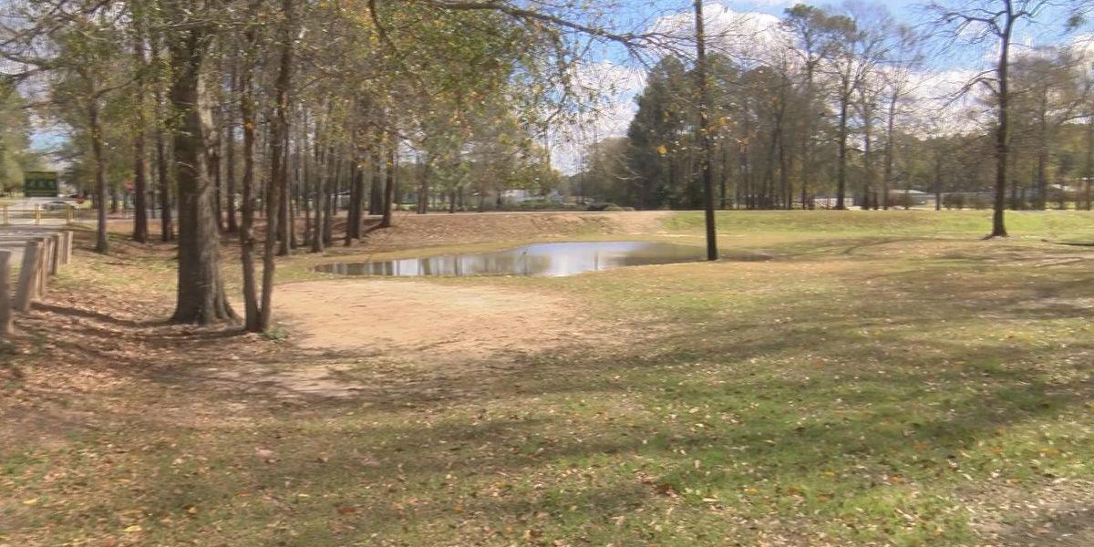 Lyons City Council votes on new dog park