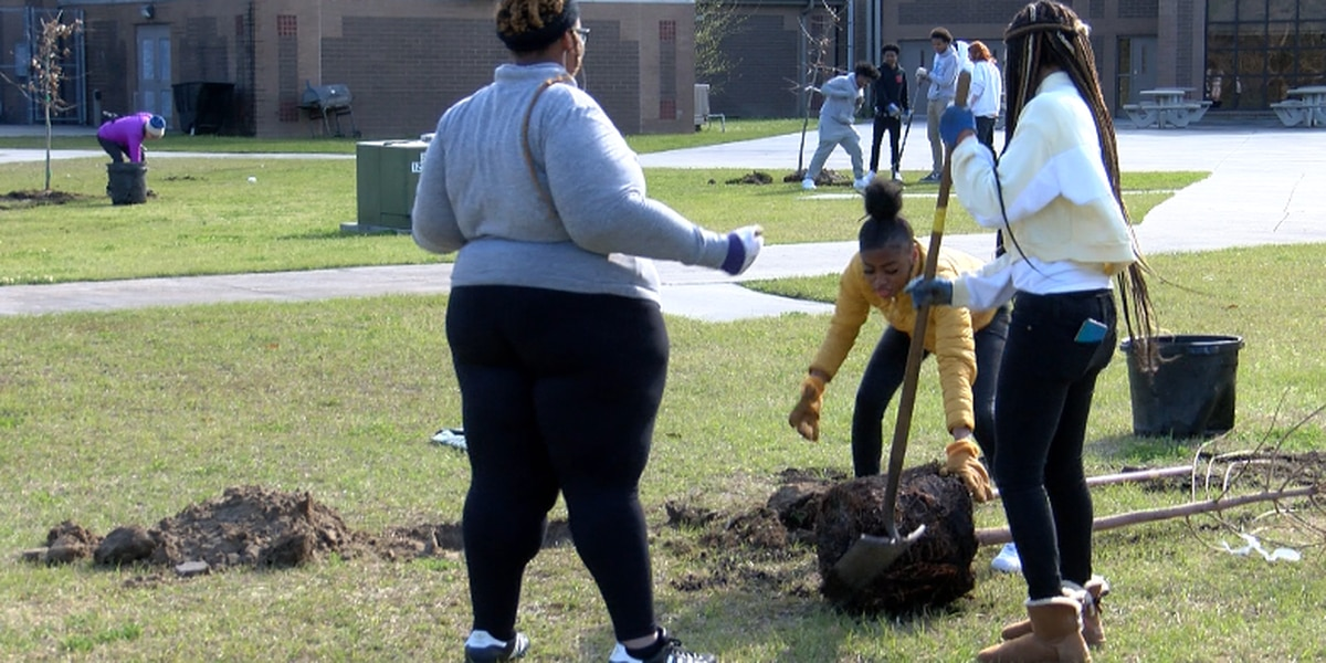 Chatham County Students celebrate Arbor Day by planting new trees
