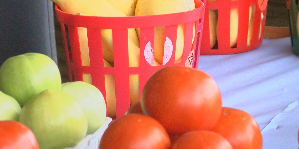 State officials ask Georgians to buy local produce
