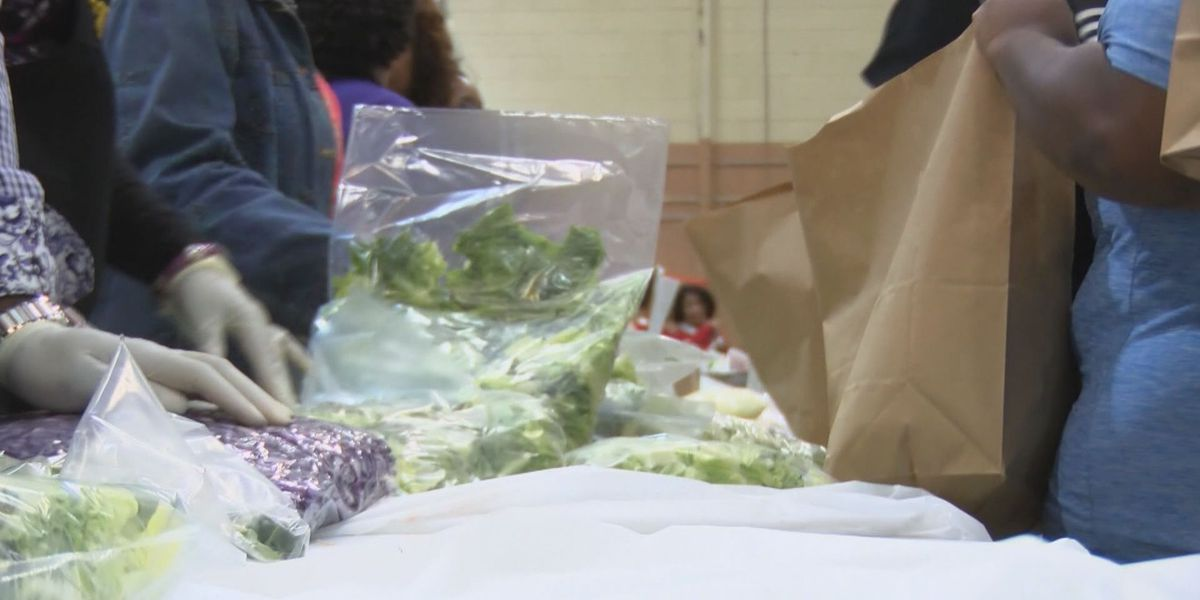 10th annual Feed the Hungry event feeds hundreds