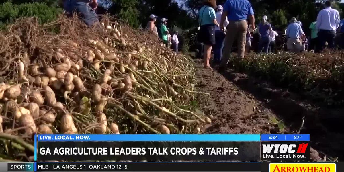 GA agriculture leaders talking crops, tariffs