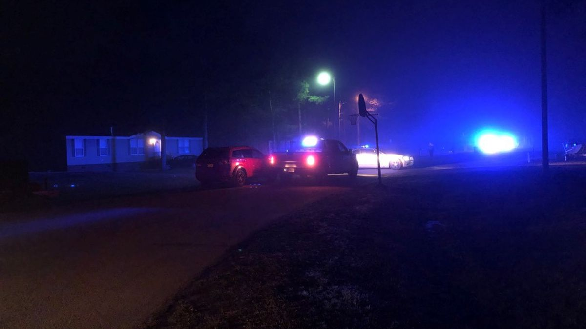 10-year-old injured in early-morning shooting in Effingham County