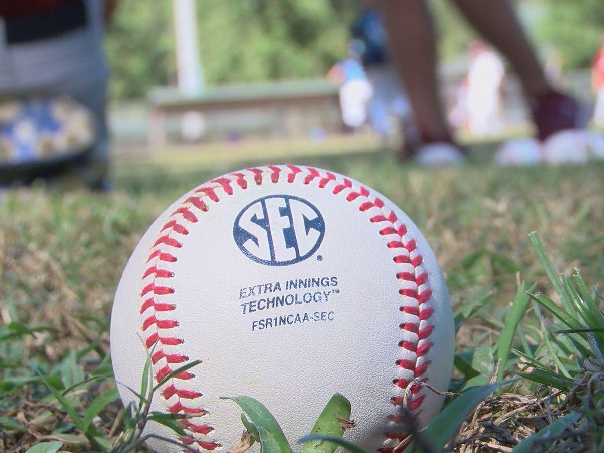 South Carolina Gamecock baseball hosts Lowcountry youth camp