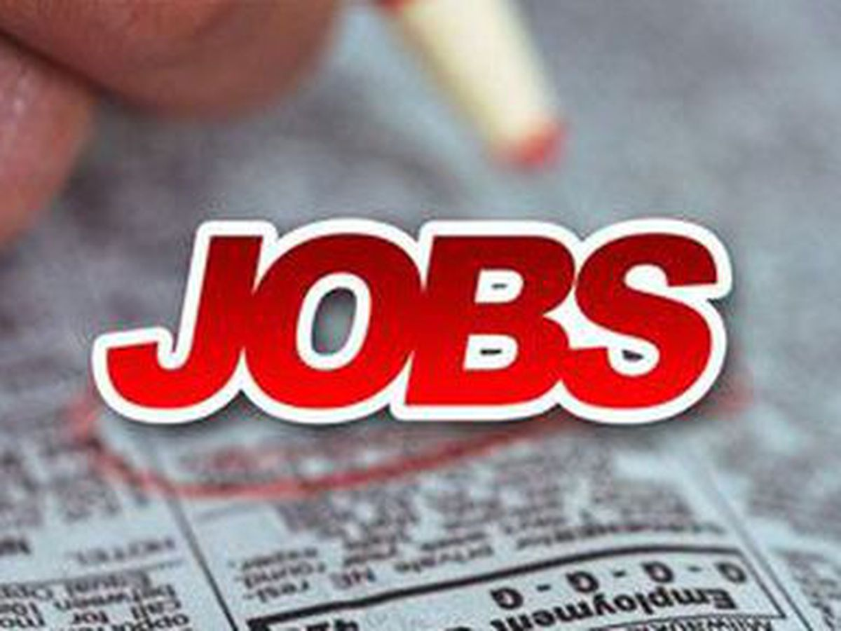 Saint Leo University to host job expo