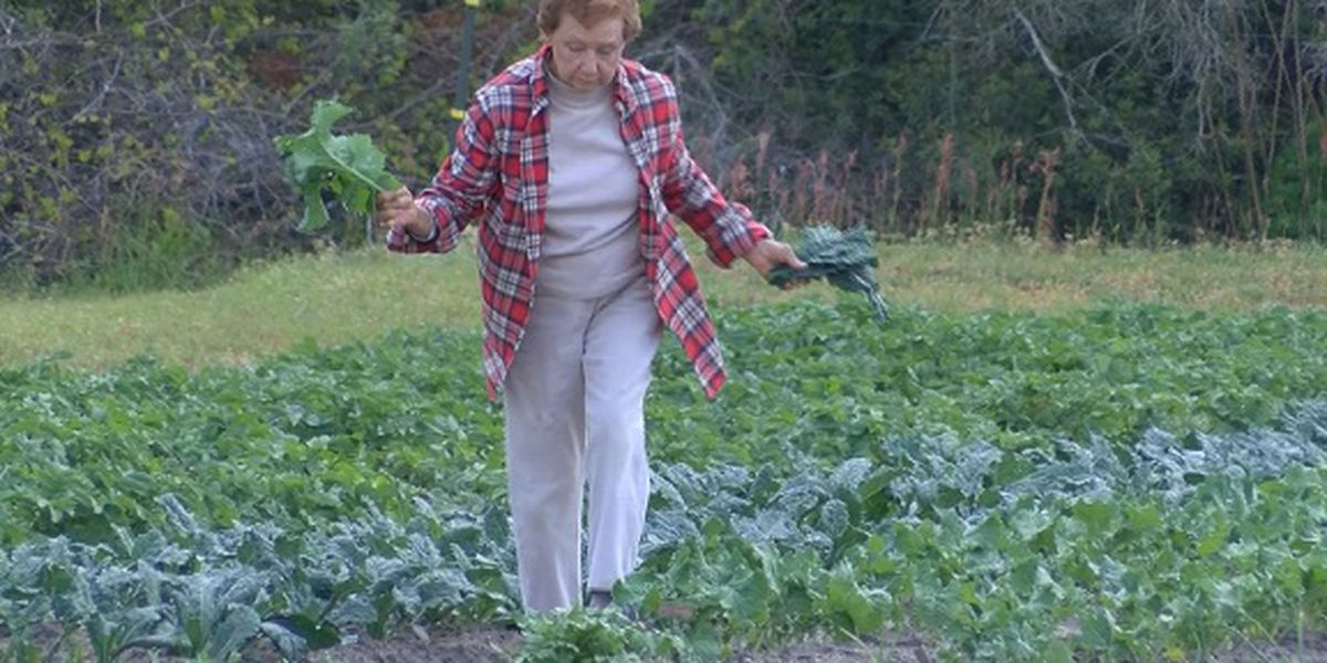 Proud to be a GA Farmer: Shirley Daughtry, Effingham County