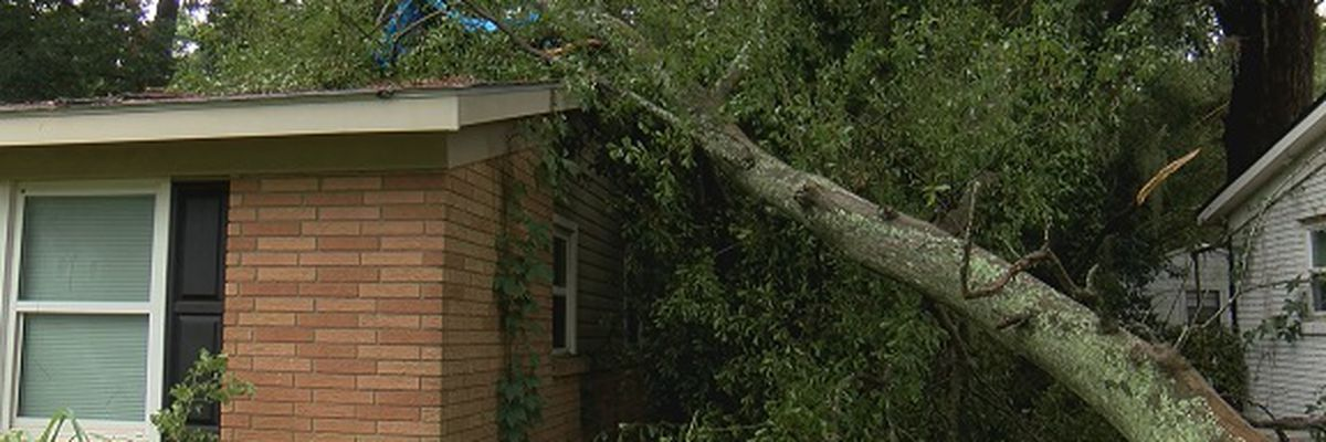 Storms cause damage in Windsor Forest neighborhood
