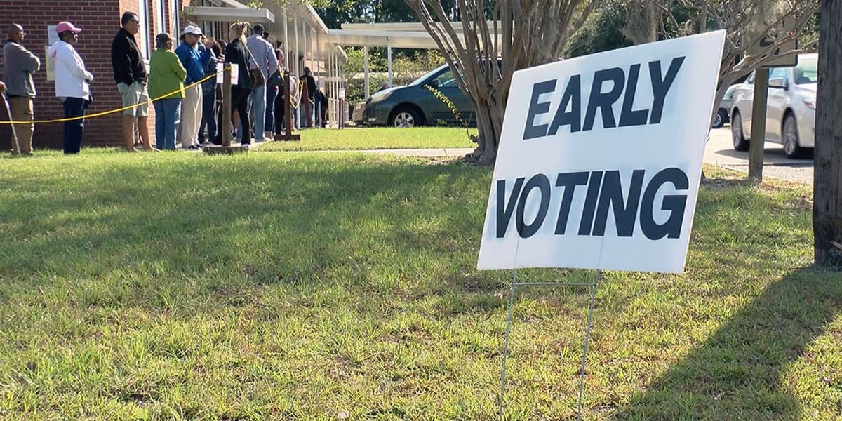 Large early voting turnout in Chatham Co. for January runoffs