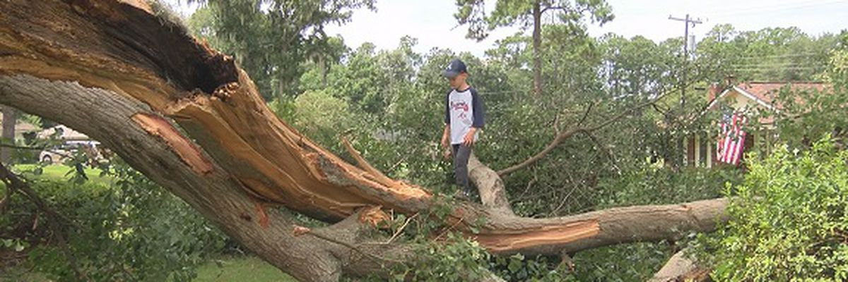 Some Savannah residents left with big mess after storms
