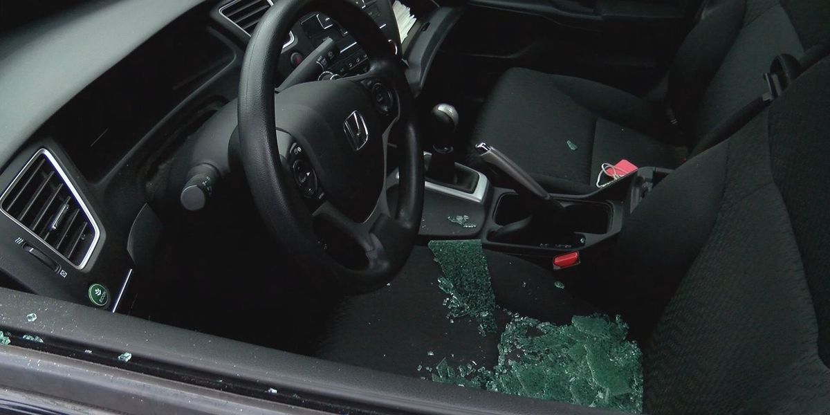 Over 20 cars broken into in Ardsley Park early Saturday morning