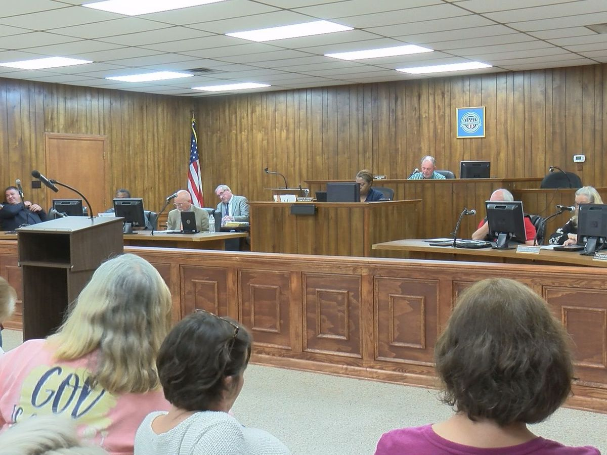 Port Wentworth city council holds first meeting with newly appointed member
