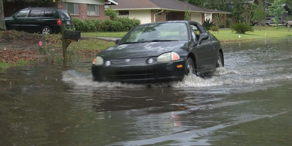 Savannah under water? Study says Savannah could be covered by water by end of century