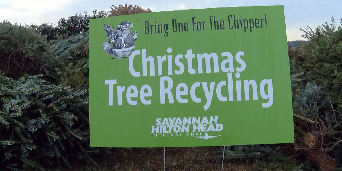 'Bring One for the Chipper' tree recycling underway at the airport
