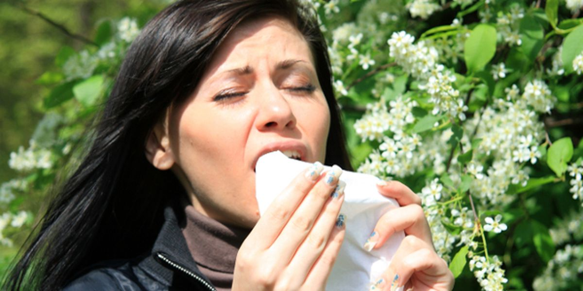 Allergic Disease is Nothing to Sneeze At
