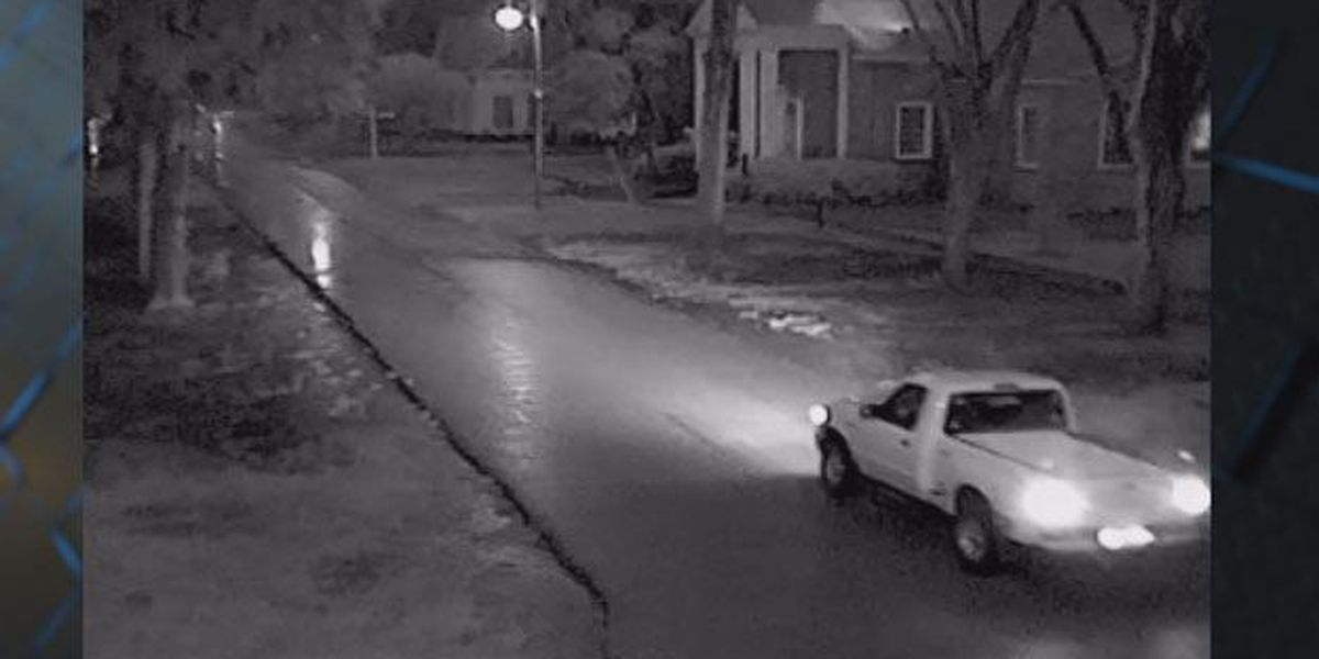 Bluffton police search for vehicle, occupant accused of stealing campaign signs